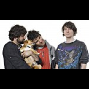 Animal Collective : Transverse Temporal Gyrus