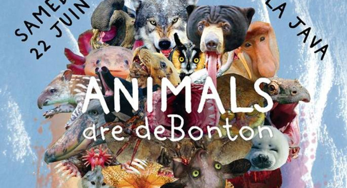 ANIMALS are deBonton: South London Ordnance & Svengalisghost