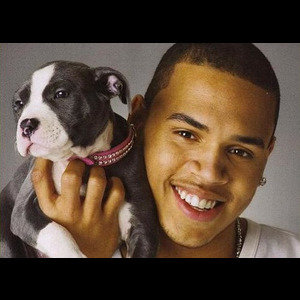 Chris Brown: Do not buy this album, this man beats women