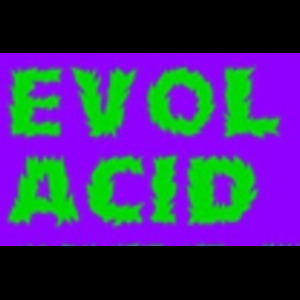 EVOL: Acid Megamix (Ideal Mixtape Eleven)