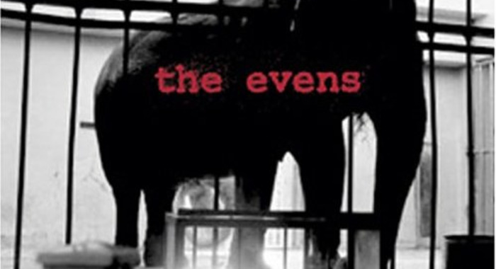 The Evens : The Odds
