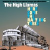 "The High Llamas- ""Here Come The Rattling Trees"""