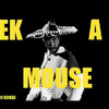 Eek A Mouse - Anarexol
