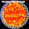 The Jesus & Mary Chain - Amputation