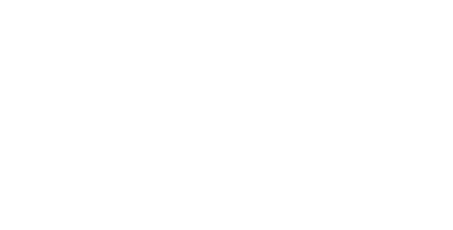 Logo The Drone